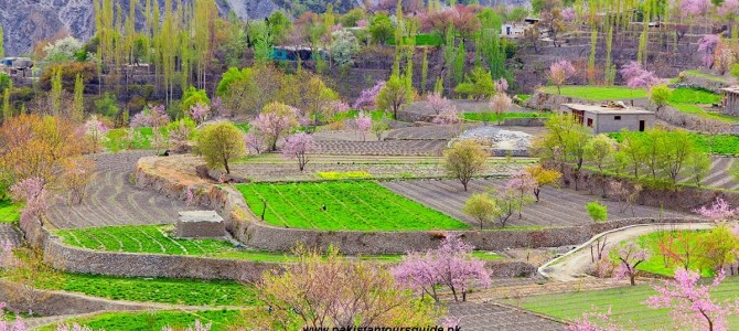 Colours of Hunza Valley