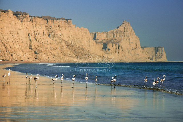 Gwadar beach