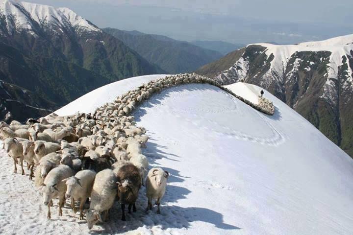 Leepa valley, Muzaffarabad, Azad Kashmir, Pakistan