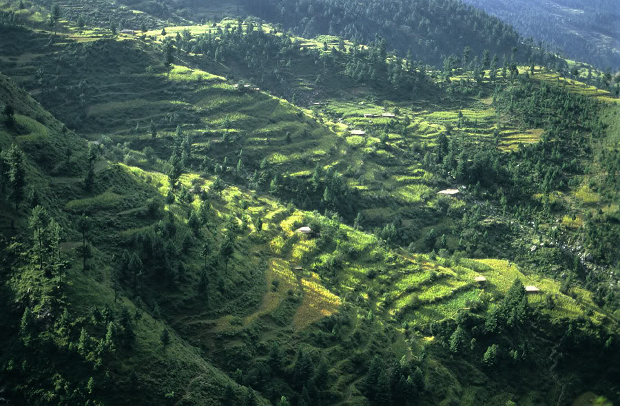Shangla-Pass-Terraces