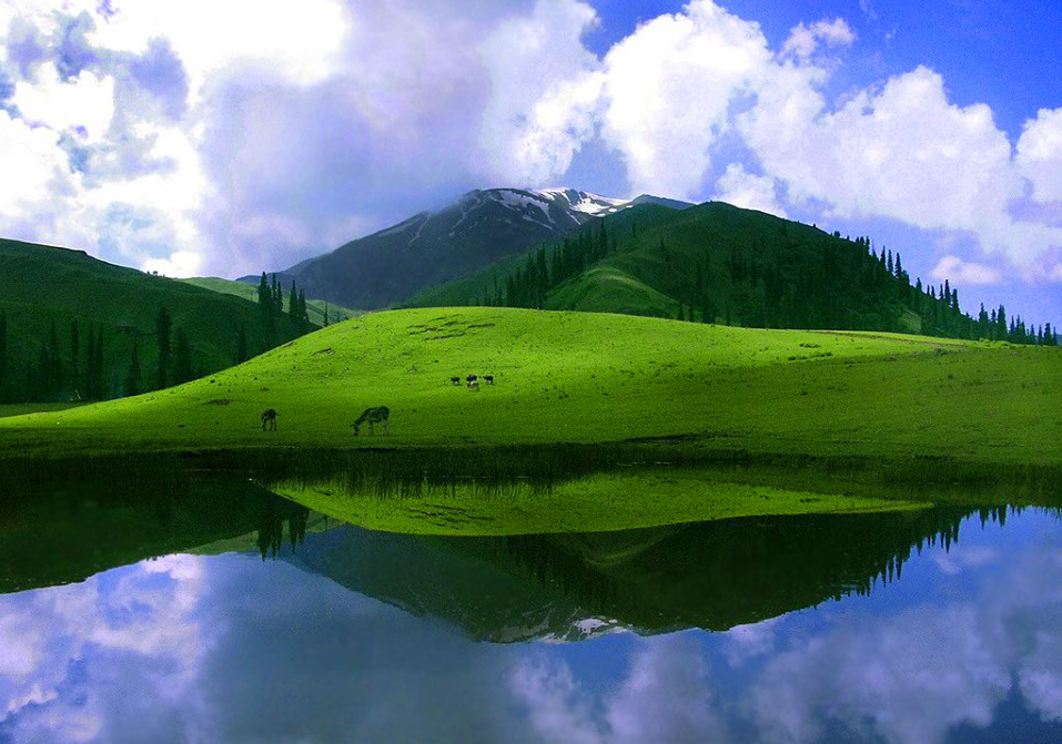 Shogran HD Wallpaper