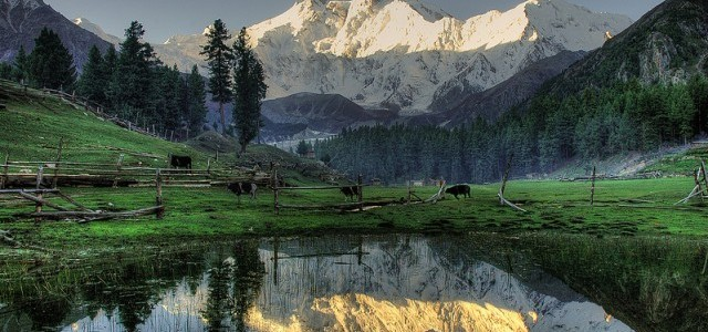 Fairy Meadows Tour Package 2016