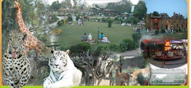 AyubNationalParkRawalpindi