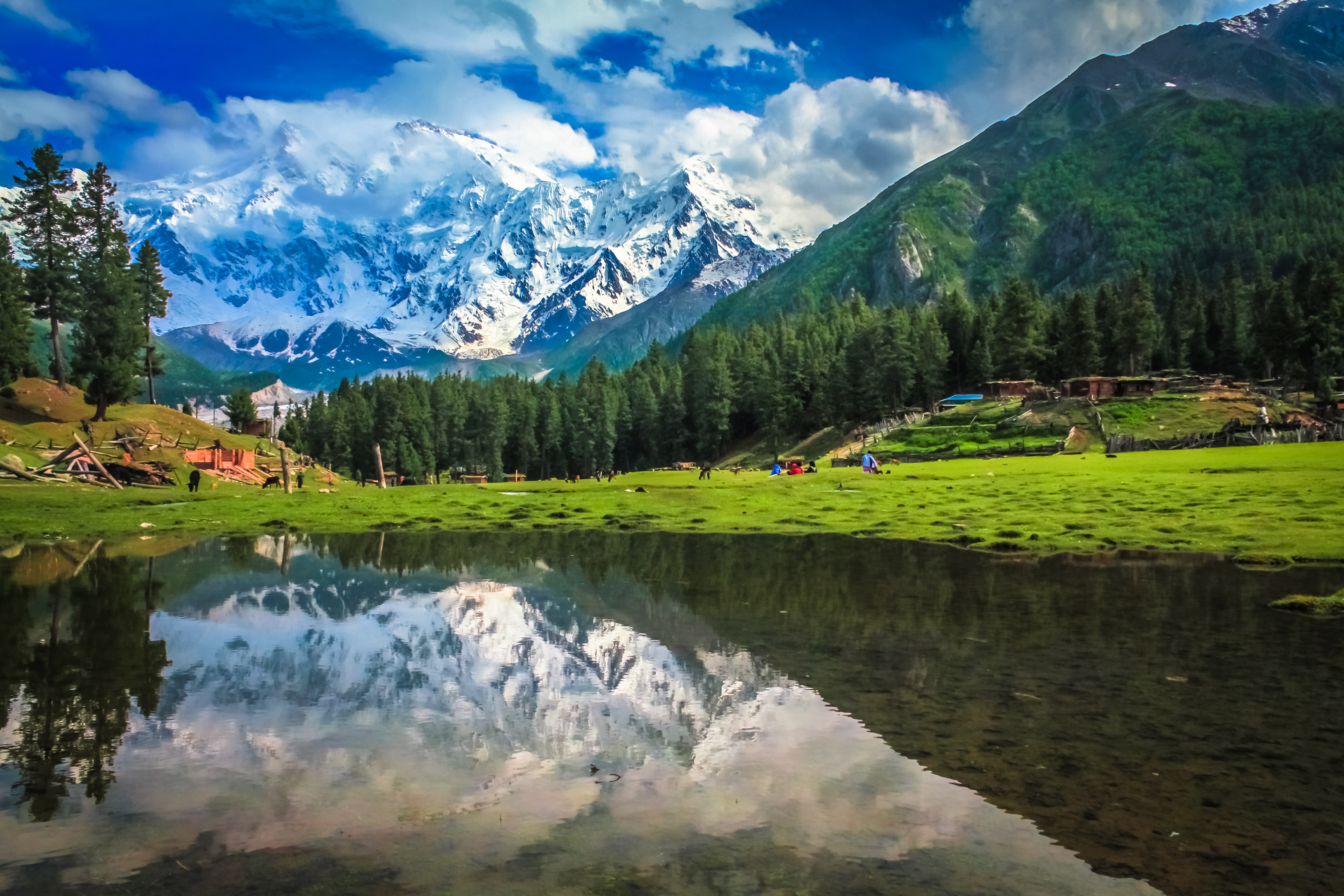 Stunning view of FAIRY MEADOWS & NANGA PARBAT