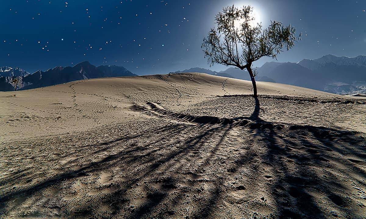 Katpana sand dunes at night