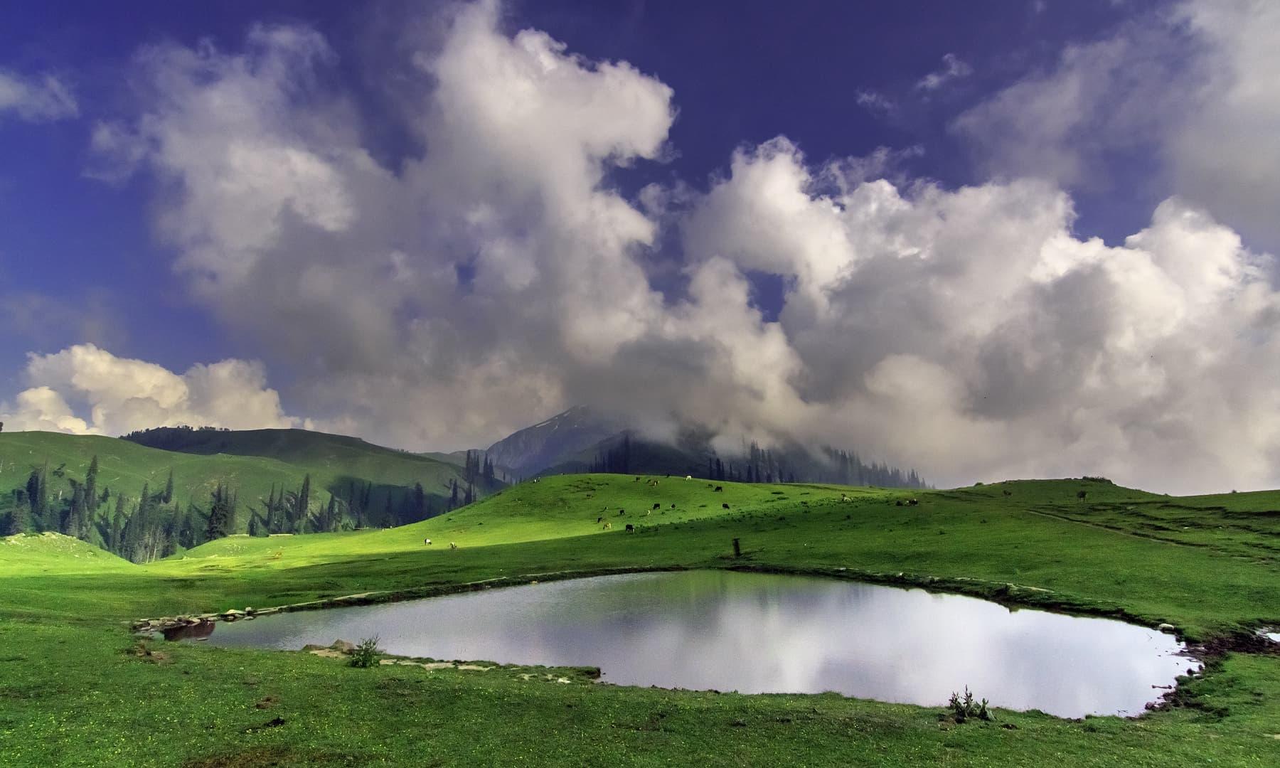 Paye lake