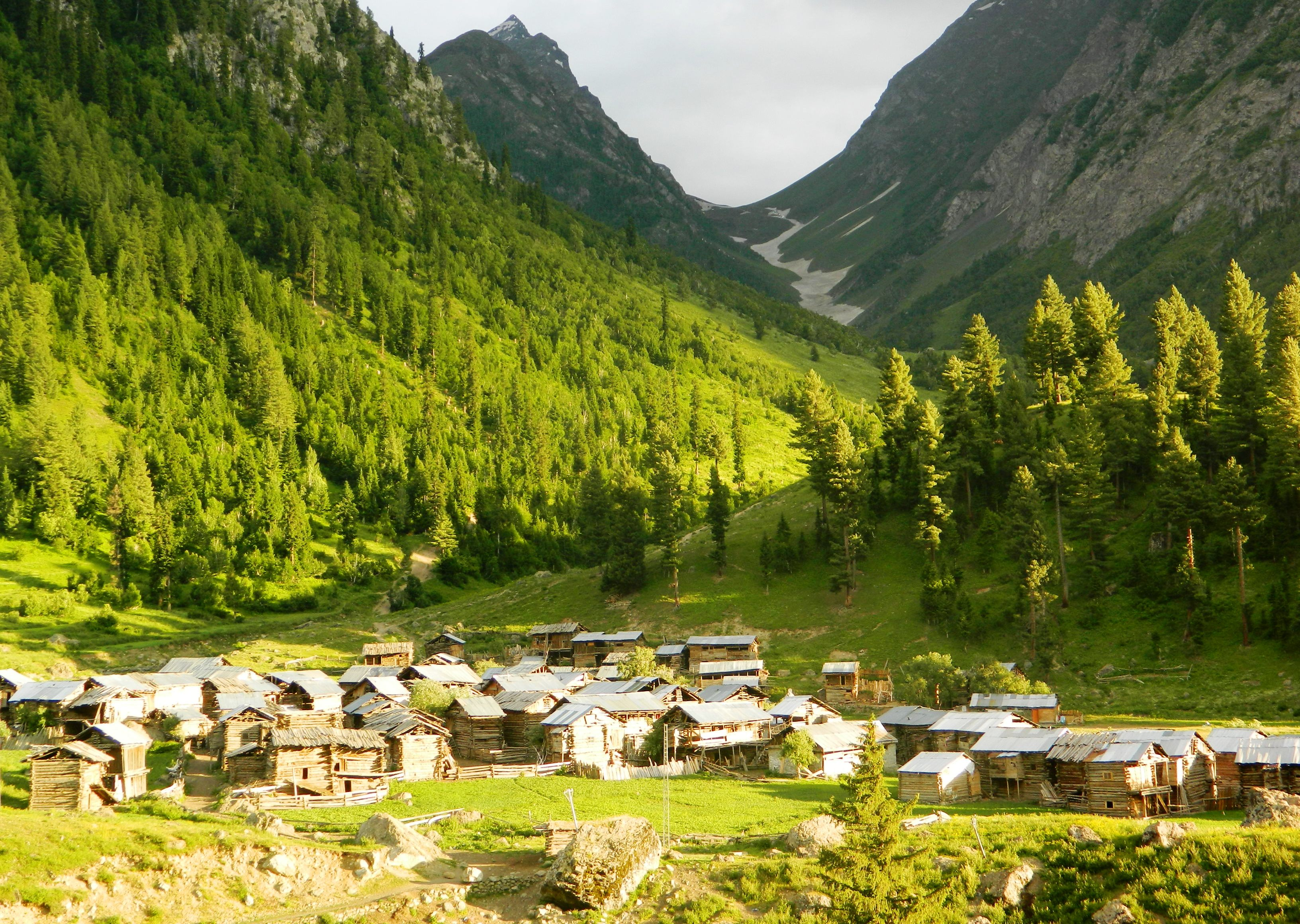 Astore Valley Minimarg