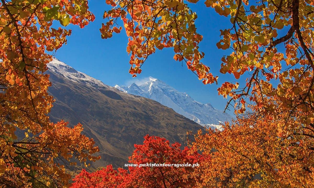 View of Rakaposhi