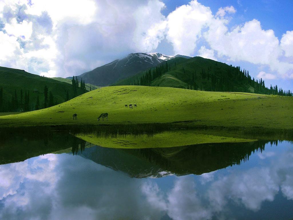 sheosar-lake-deosai-plains