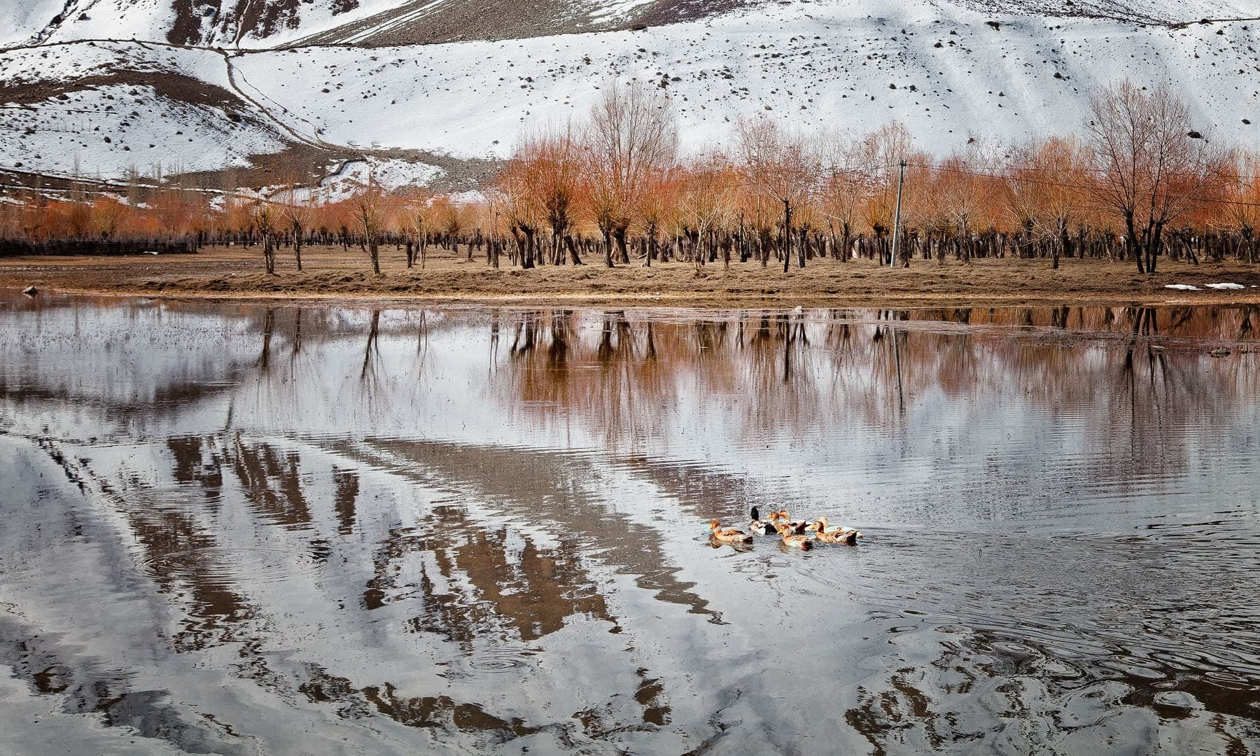 Ghizer District