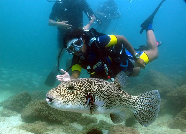 5.-Scuba-Diving-and-Snorkeling