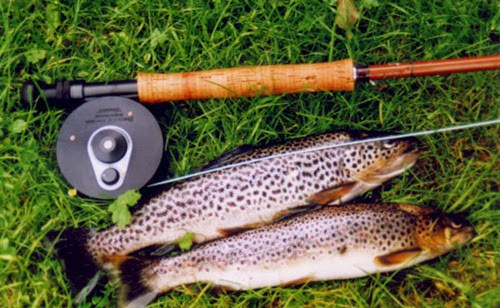 Fishing-Trout